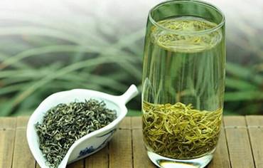 六大茶类绿茶